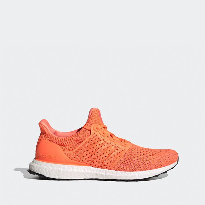 adidas Ultraboost Clima DNA topánky S42542