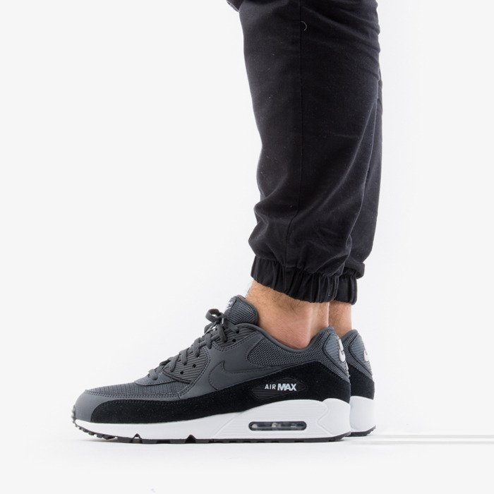 Nike Air Max 90 Essential AJ1285 021