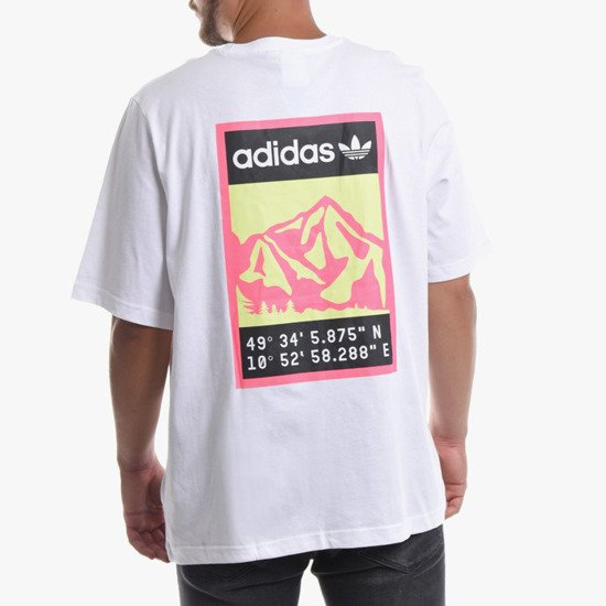 adidas Originals Graphic Tee FR0588