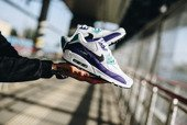 Nike Air Max 90 Essential AJ1285 103